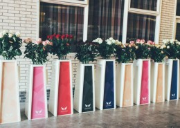 Presentatie Sokkels Zuilen - vd Arend Roses